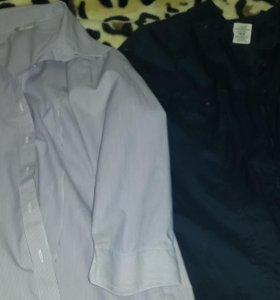 Рубашки , блузки
