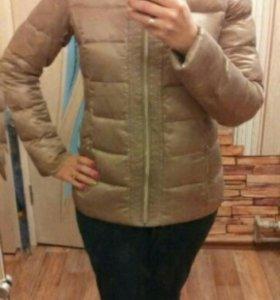 Куртка весна- осень