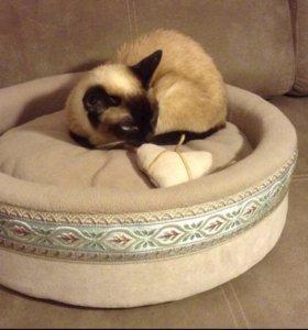 Лежанка для кошек и маленьких собак