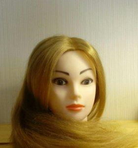Манекен для плетения кос + в подарок штатив