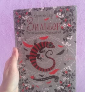 3 книга «Зильбер»