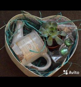 Набор «посади сам» Фантастический подарок
