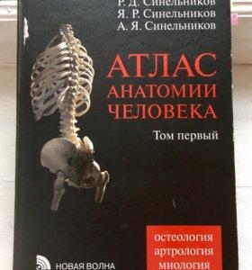 Синельников. Атлас анатомии человека. Том первый