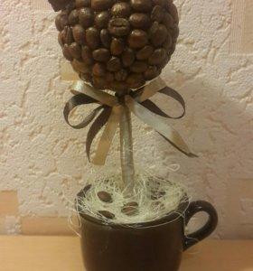 Миниатюрное кофейное деревце 18 см
