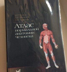 Атлас по нормальной анатомии человека