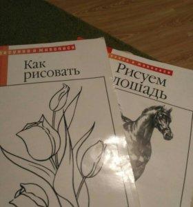 """Книги """"Урока рисунка и живописи """""""