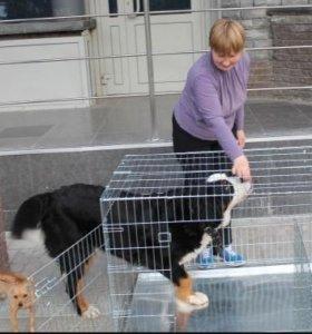 Клетка для животных с 2 дверцами (I.P.T.S.)