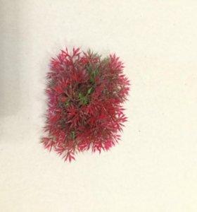 Искусственный мох для аквариума