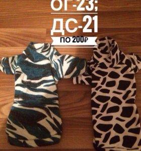 Одежда для маленьких собачек)