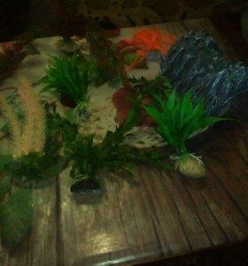 искуственые растения 6шт и грот