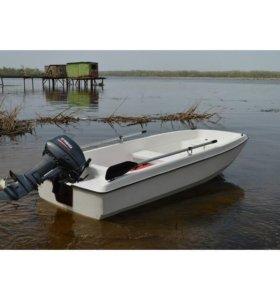 Комплект Лодка Кайман 300 с мотором Sea Pro 9.8