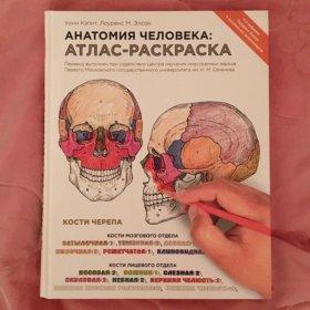Атлас - раскраска Анатомия Человека Уинн Кэпит