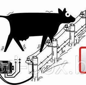 Комплект электропастух для крс + телята + овцы