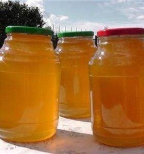 Мёд со своей пасеки разнотравья