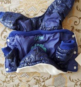 Куртка для собаки маленькой породы