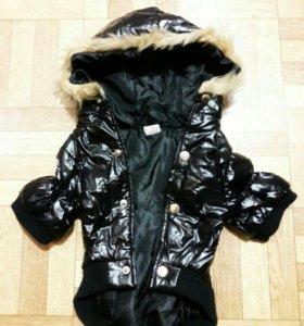 Стильная модная Куртка