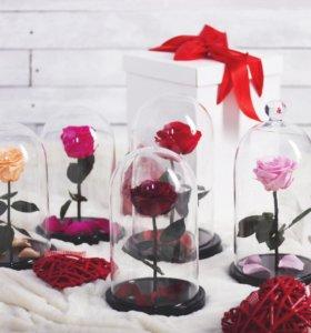 Невянущие розы в колбе