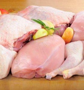 Мясо ЦБ заморозка ОПТ