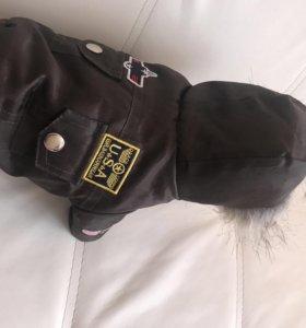 Куртка для собак 19см