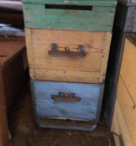 Улья для пчёл Дадан 10 и 12 рамочные.