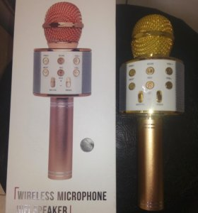 Колонка с функцией Караоке Микрофона Wster WS-858