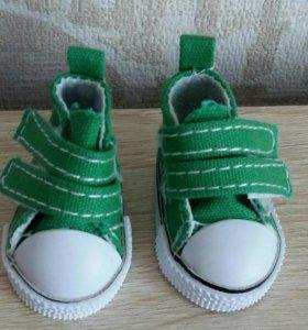 Обувь на Паола Рейна