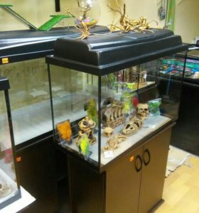 Новый аквариум 100 л