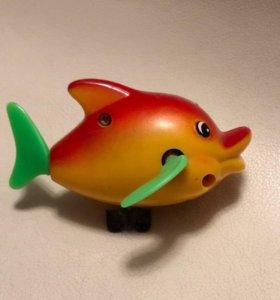 Дельфинёнок заводной для купания