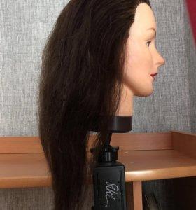 Учебная голова для парикмахера