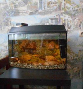 аквариум со всем необходимым