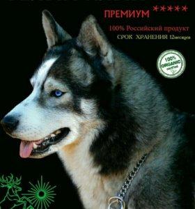 Корм для собак БЕЛЫЙ КЛЫК