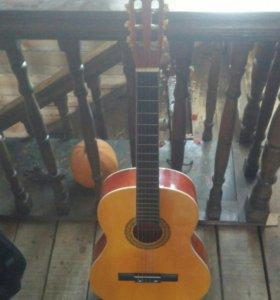 Продам гитару в чехле + запасные струны бесплатно