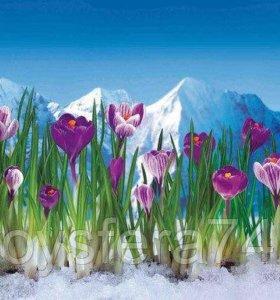 Кухонный фартук ПВХ Альпийская весна