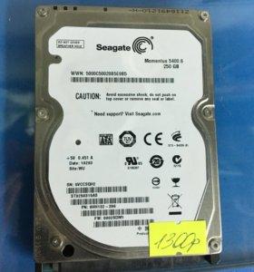 Жесткие диски 250, 500гб