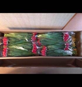 Тюльпаны, мимоза оптом