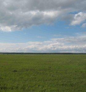 Участок, 200000 сот., сельхоз (снт или днп)