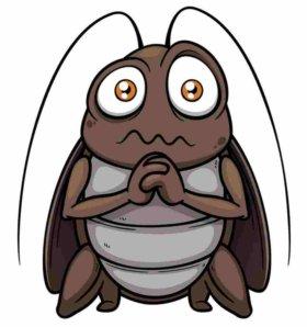 Уничтожение клопов, тараканов, блох, муравьев