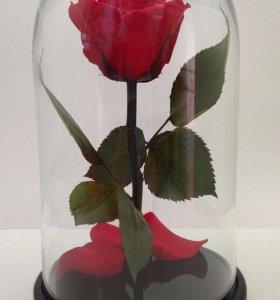 Роза в стеклянной колбе + подарочная упаковка