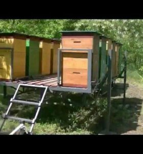 Модули для пчеловодов