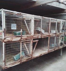 Клетки для кроликов б/у