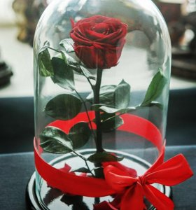 """Роза в колбе """"Премиум"""" (10см) коробка и открытка"""