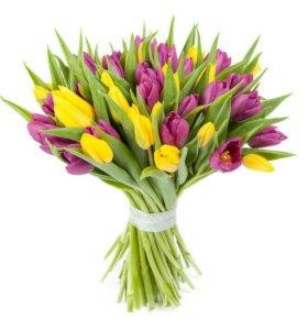 Тюльпаны под заказ