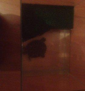 2 мальчика Красноухие Черепахи + террариум