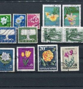 Набор марок флора
