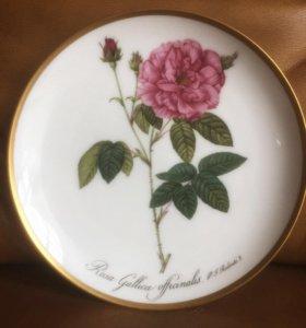 Hutschenrenther Германия Настенная тарелка