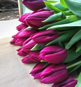 Тюльпаны к 8-му марта
