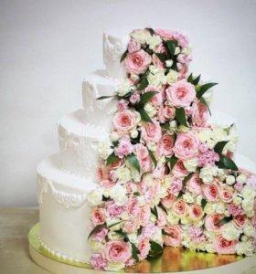 Организация свадьбы, юбилея