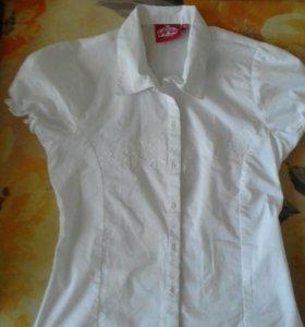 Блузки белые