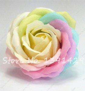 Китайская Роза - Редкие экзотические Семена 20 шт
