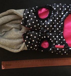 Одежда для питомца